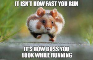 bossrunning