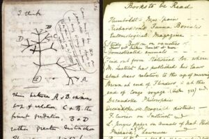 science notebook page from Darwin