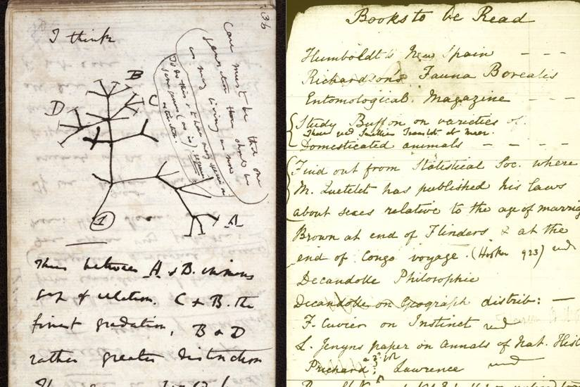 image of science notes